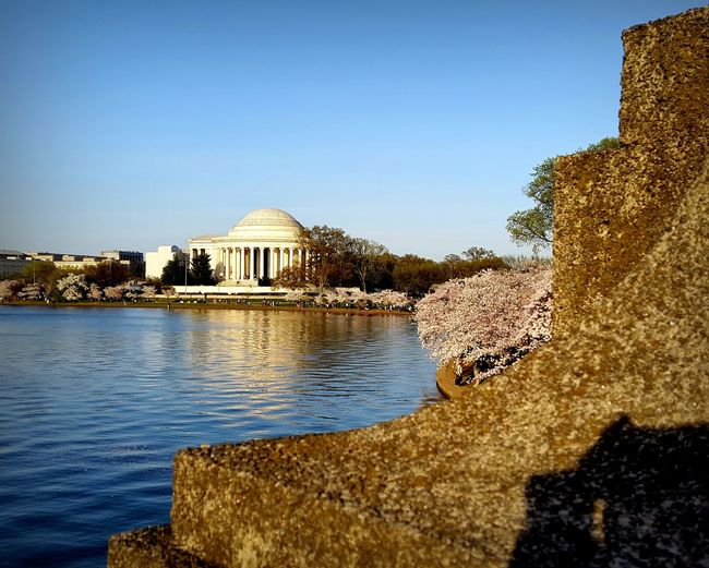 Cherry Blossom Jefferson Memorial Landscape_Collection Architecture Outdoors Travel Destinations Likeforlike Cherryblossom Springtime Cherry Tree Enjoying The View Park WashingtonDC Composition Oneofthosedays Taking Photos Beautiful Day Exploring Famous Place