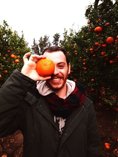Portrait of young man holding orange while standing in orchard