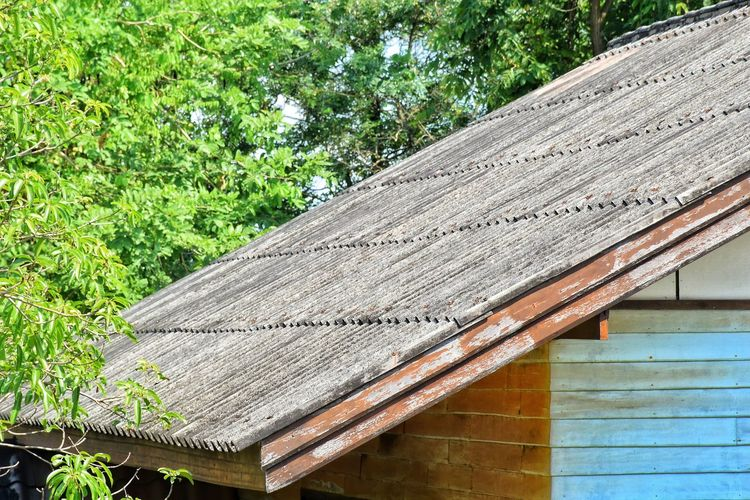 Close-up of wooden roof of building