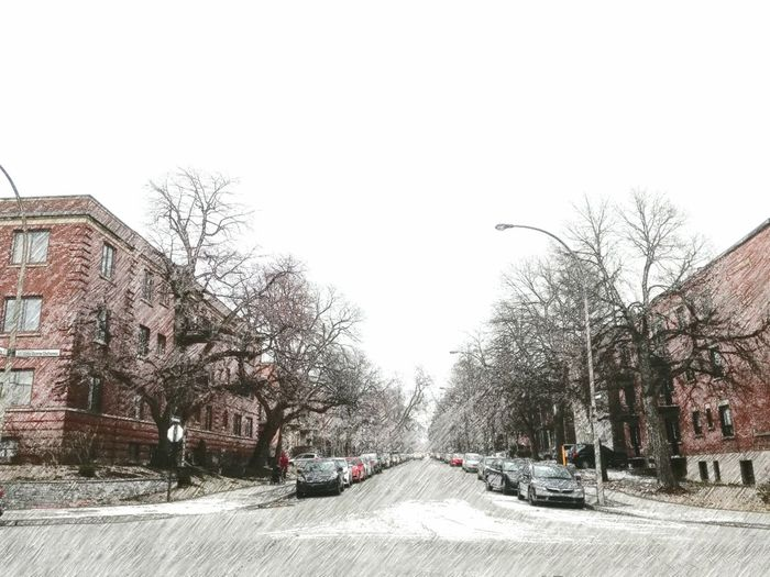 Snowing Outside Snowing Snow Covered Snow In The City Snow On Road Wintertime Winter In The City Cold Temperature Snowcovered Urban Photography Montréal Snow Day Tree Bare Tree Land Vehicle Clear Sky City Road Car Street Sky vanishing point Diminishing Perspective Empty Road