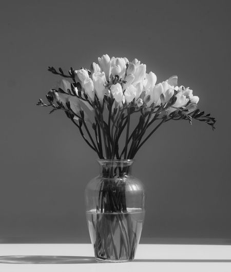 Close-up of flower vase on glass table