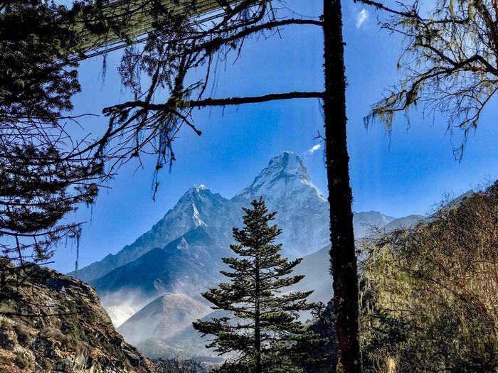 Everest Base Camp Trek Nepal - view of Ama Dablam Beauty In Nature Cold Temperature Mountain Mountain Peak Mountain Range Scenics - Nature Snowcapped Mountain Tree
