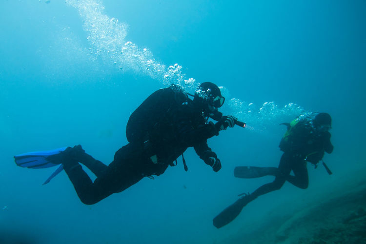 divers in immersion near the reef Adventure Day Exploration Extreme Sports Leisure Activity Men People Real People Scuba Diver Scuba Diving Sea Swimming Togetherness UnderSea Underwater Water