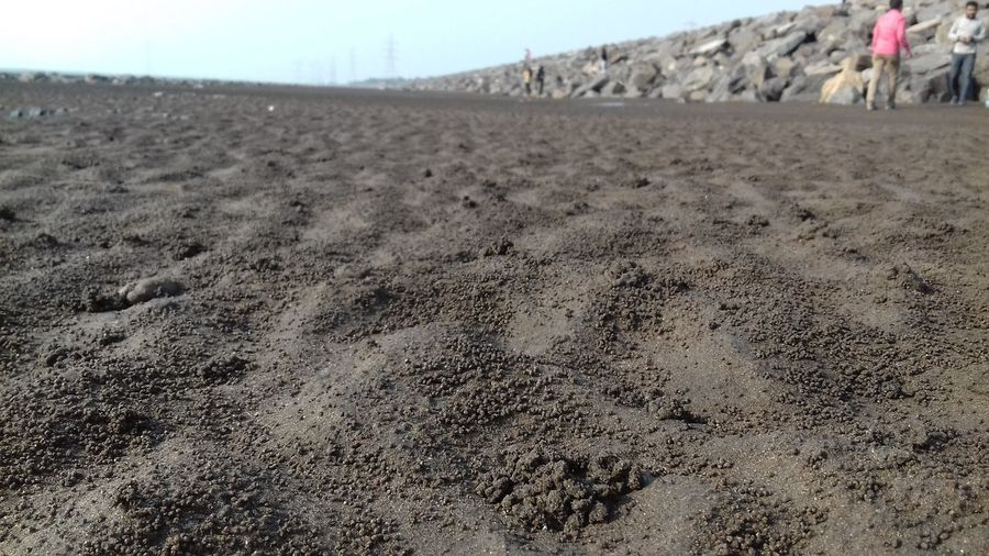 Soil with small crabs Beach Photography Arid Climate Beach Beach Soil Black Soil Day Gujrat_shoots Land Landscape Nature Outdoors Rocks And Water Rocks On The Shore Sand Sea Beach And Sky Seascape Sky Soil On The Ground Surat Photography Surface Level Textured  Tourism