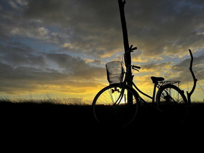 Sunset ride Sunset Sunset_collection Eyem Best Shots Nature_collection Eyem Gallery Eyeem Philippines Travel Eye4photography  Silhouettes Relaxing Moments Bike Biking Vintage Bicycles Japan Bike Celebrate Your Ride