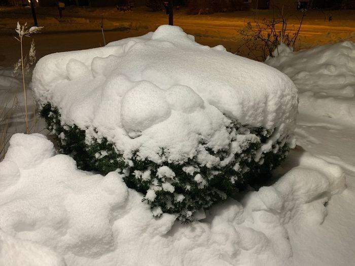 First Snow Snow