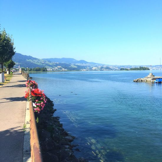 Zürichsee bei Rapperswil Lake Of Zurich Zürichsee Zürisee Water Sky Clear Sky Copy Space Nature Day Sea Beauty In Nature Blue Sunlight Land Outdoors Plant