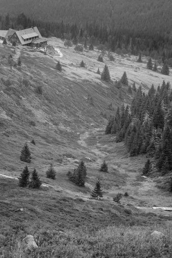 """""""Under Labsky Peak"""" mountain shelter Autumn Freedom Karkonosze Sudety Beauty In Nature Black And White Day Forrest Giant Mountains Growth Hiking Trail Landscape Landscape_photography Mountain Mountain Shelter Nature No People Outdoors Scenics Shelter Trail Tranquil Scene Tranquility Tree Valley"""