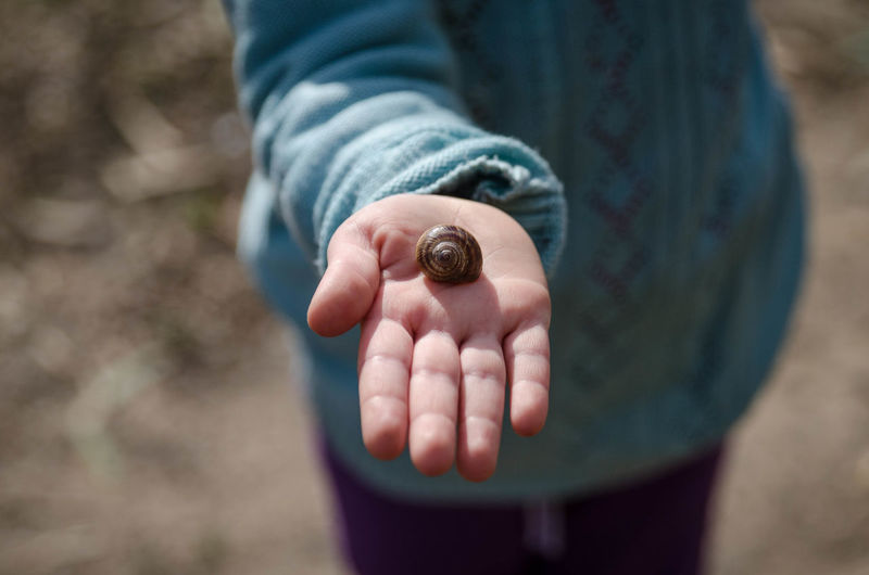 Close-up of hand holding snail