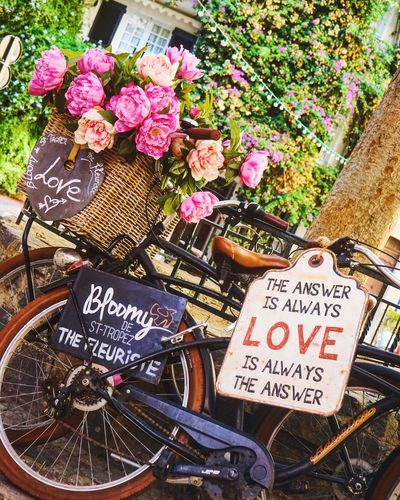 Streets of Saint Tropez Flower Flower Market Outdoors Nature Freshness Communication Close-up Saint Tropez Quotes Bike Streetphotography Street Colorful Summer Blooming No People Peace Wanderlust Travel Outdoor Photography Travel Photography Discover