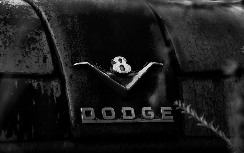 """If Only They Could Talk"" Series 1956 Dodge Truck Abandoned Abandoned Truck B & W  Back In The Day Black And White Photography Classic Close-up Day Derelict Dodge Emblem  Focus On Foreground Hood Emblem If They Could Only Talk Job Rated Rusty Selective Focus Showcase April The Week On EyeEm Truck V8 Vintage Vintage Truck Vintage Trucks"
