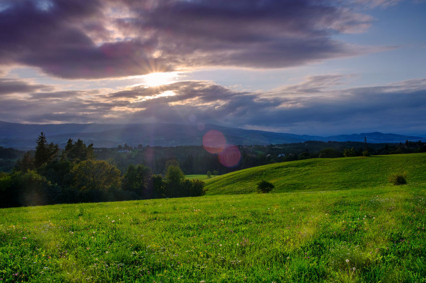 Stopover - beautiful Styria Austria Having A Break Vacations Beauty In Nature Cloud - Sky Day Farming Field Grass Green Color Idyllic Landscape Lawn Lens Flare Mountain Nature No People Outdoors Relaxation Scenics Sky Styria Sunbeam Sunset Tranquil Scene