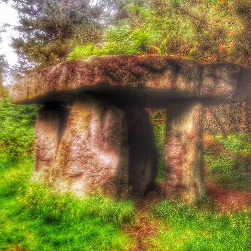 Druid's Secret Place The Temple Landscapes Landscape Secret Garden