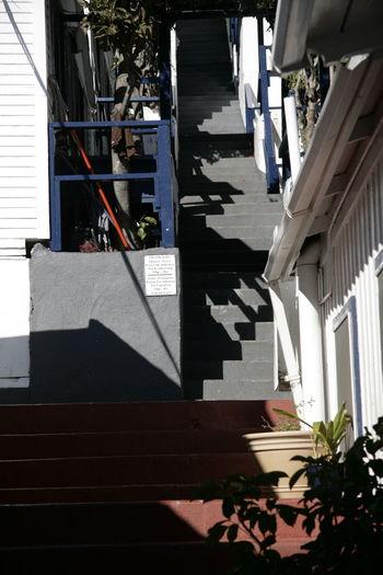Staircase Blue White Stairs Shadows California Catalina Island  Summer