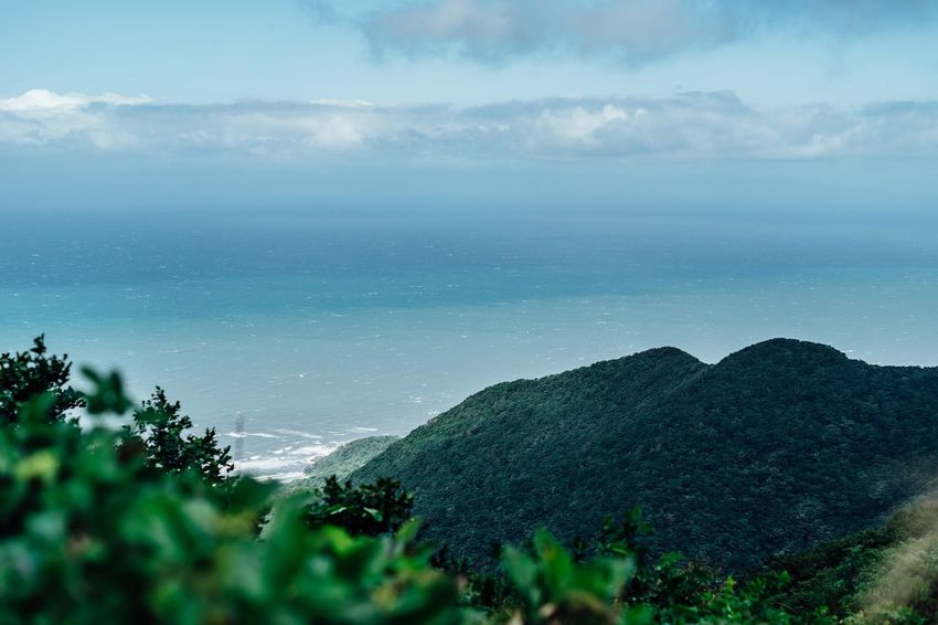 View From The Top White Waves Top Of The Mountain Sea And Clouds Travel Destinations Windy Day After The Storm Beauty In Nature Power In Nature Alone Time No People Trees Branches Landscape Yahiko Niigata September September 2017