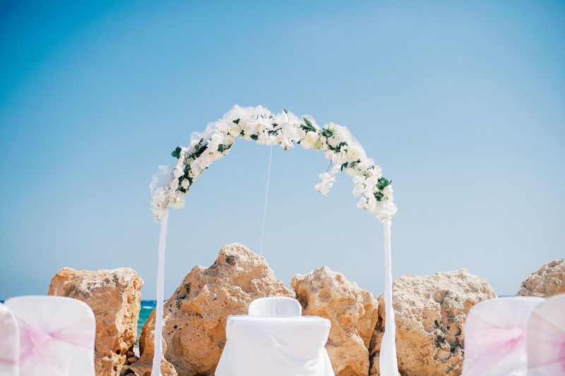 wedding details Flower Focus On Foreground No People Physical Geography Wedding Wedding Day Wedding Photography White White Color