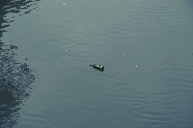 Break The Mold Water Waterfront High Angle View No People Swimming Day Lake Nature Outdoors Animals In The Wild Animal Themes Bird Bottle Bottle In Water Toulouse River Canal Canal Du Midi Middle