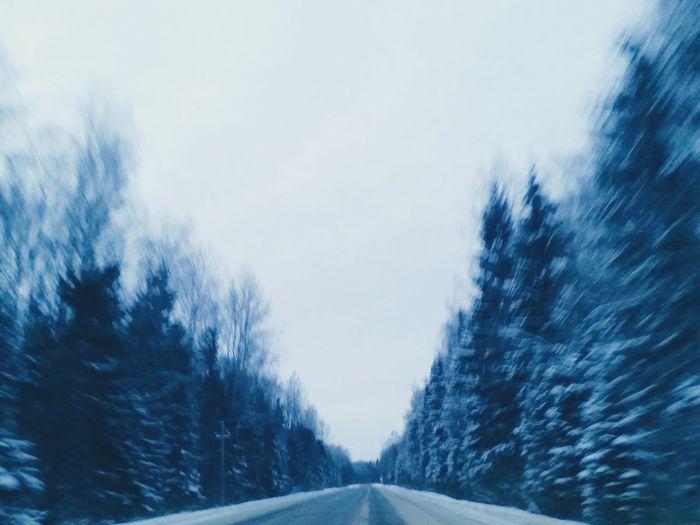 Starting A Trip Traveling Enjoying Life Eye4photography  Winter EyeEm Landscape Taking Photos Road Hugging A Tree