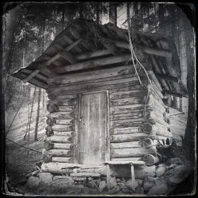 Somewhere in the woods Blackandwhite Hipstamatic The_guido