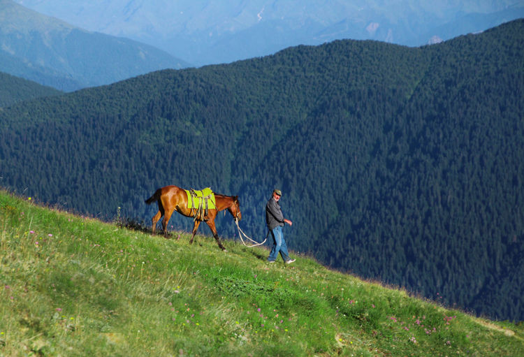 Man Walking With Horse On Mountain