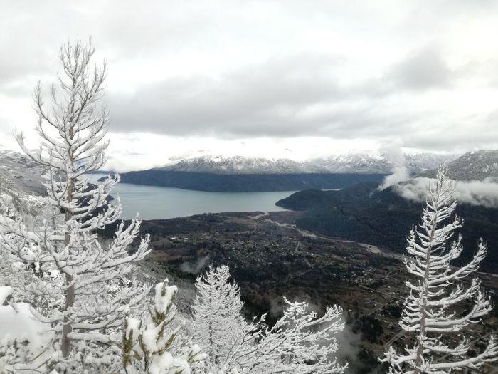 Tree Cold Temperature Winter Snow Mountain Sky Landscape