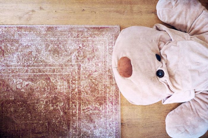 Beige Cuddle Home Teddy Carpet Childhood Childhood Memories Close-up Cuddles Cuddling Cuddly Cuddly Toy Day Dog Eyes High Angle View Indoors  Lovely No People Nose Still Life Teddy Bear Toy