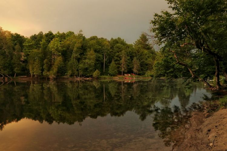 Before the Storm Riverside Outdoors Nature Beauty In Nature Light And Shadow Relaxing Stormy Sky Sunset Ontario, Canada Beach Tree Water Reflection Sky Standing Water Woods Lush - Description Countryside Lush Foliage Symmetry Forest Calm The Great Outdoors - 2018 EyeEm Awards