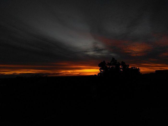 O simples conquista a alma. 🔆 Nature Scenics Landscape Silhouette Vacations Beauty In Nature Sunset Cloud - Sky Sky No People Climbing Day Tree Architecture City Sun Ailtonalmeidaz Almeidaz