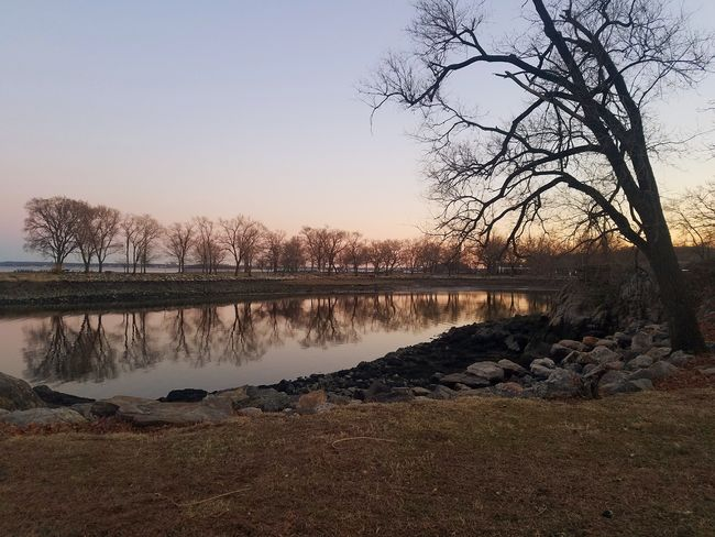 A beatiful evening at Glen Island Park, New Rochelle (3/18/2018) Water Tree Sunset Reflection Sky Tranquil Scene Calm Tranquility Scenics Non-urban Scene