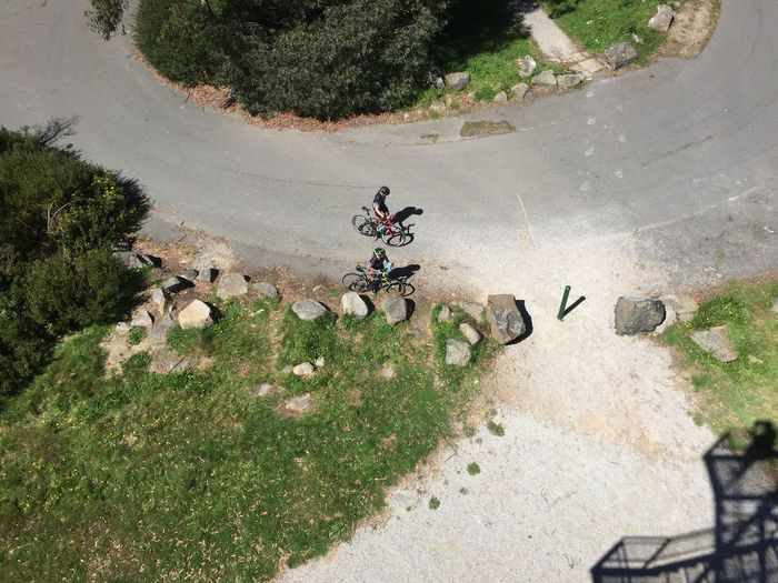 Directly above shot of men with bicycles on road