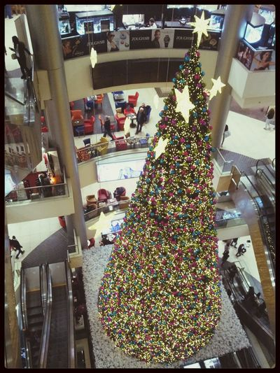 Le Mall, Habtoor Biggest Christmas Tree I've Seen! In A Mall Beautiful