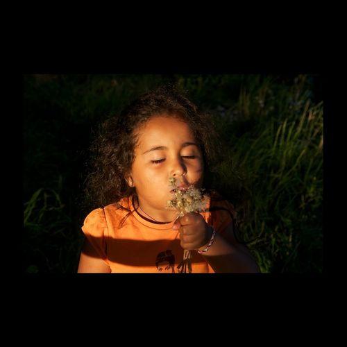 Fleurs à souffler. Dent de lion. Dandelion. Dandelion Pissenlit Kid EyeEm Best Shots