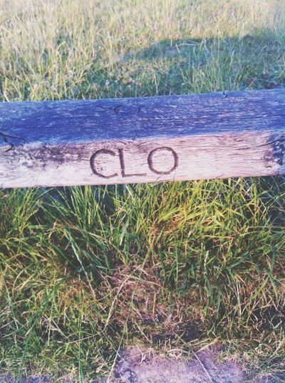 My name on a bench Soaking Up The Sun Relaxing Name