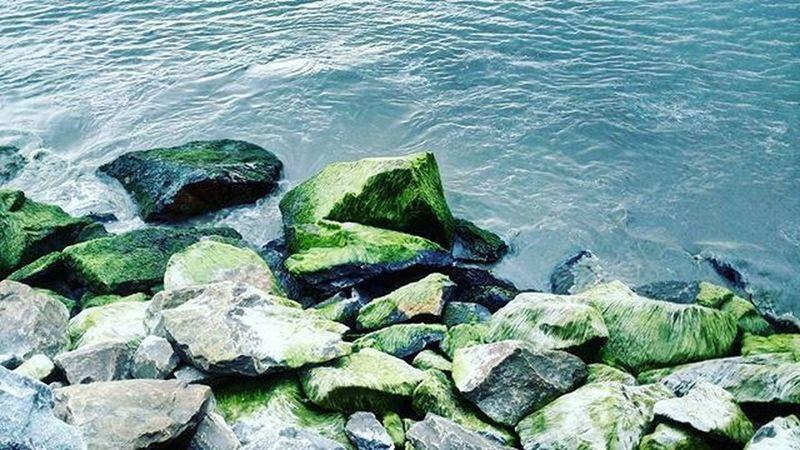 Sea Rocks Waves Fear Wind Green Calicut Calicutbeachwalk Harber Random Earth Sand Sandandsun