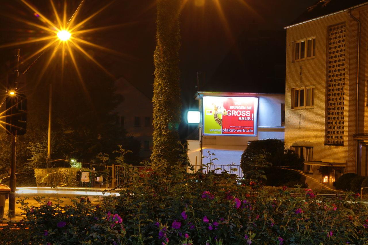 night, illuminated, lighting equipment, built structure, outdoors, architecture, building exterior, street light, no people, flower, city, tree, nature, sky