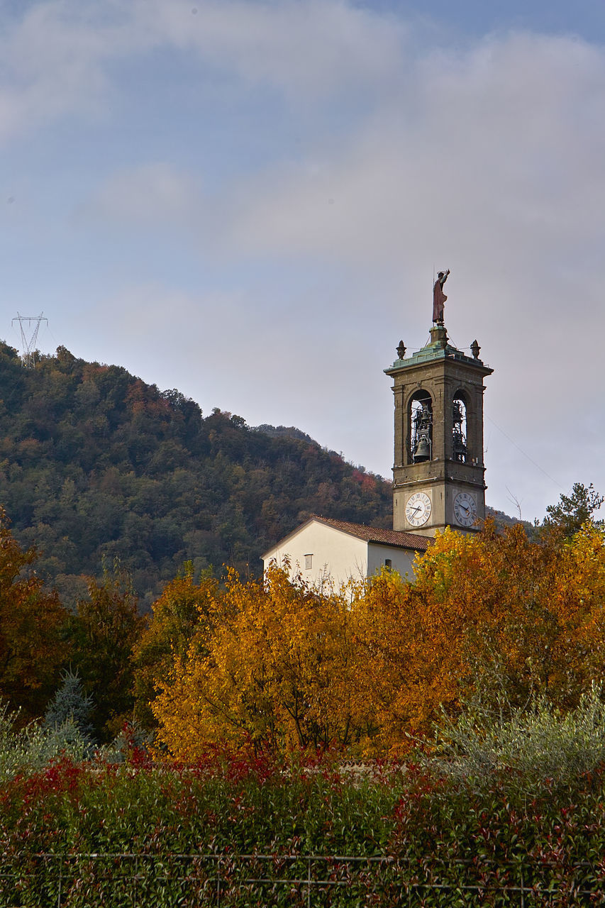 TOWER AMIDST TREES AND BUILDINGS AGAINST SKY
