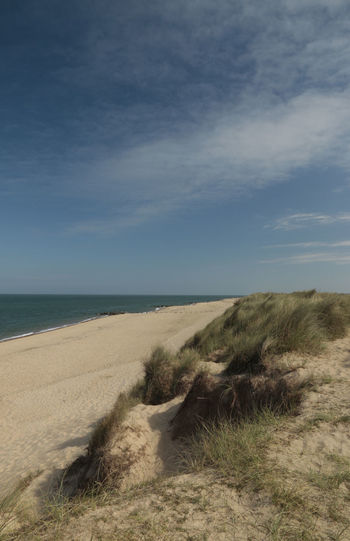 From the dunes at Horsey, Norfolk UK in July Horsey  Horsey Norfolk Beach Beauty In Nature Cloud - Sky Day Grass Horizon Horizon Over Water Land Marram Grass Nature No People Non-urban Scene Outdoors Plant Sand Scenics - Nature Sea Sky Tranquil Scene Tranquility Water