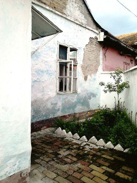 Dream House Zemun