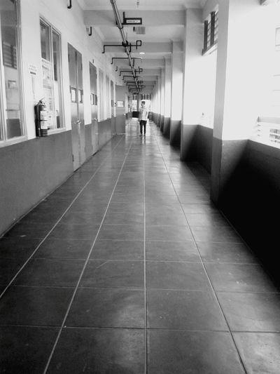 CIV142 Distance LINE