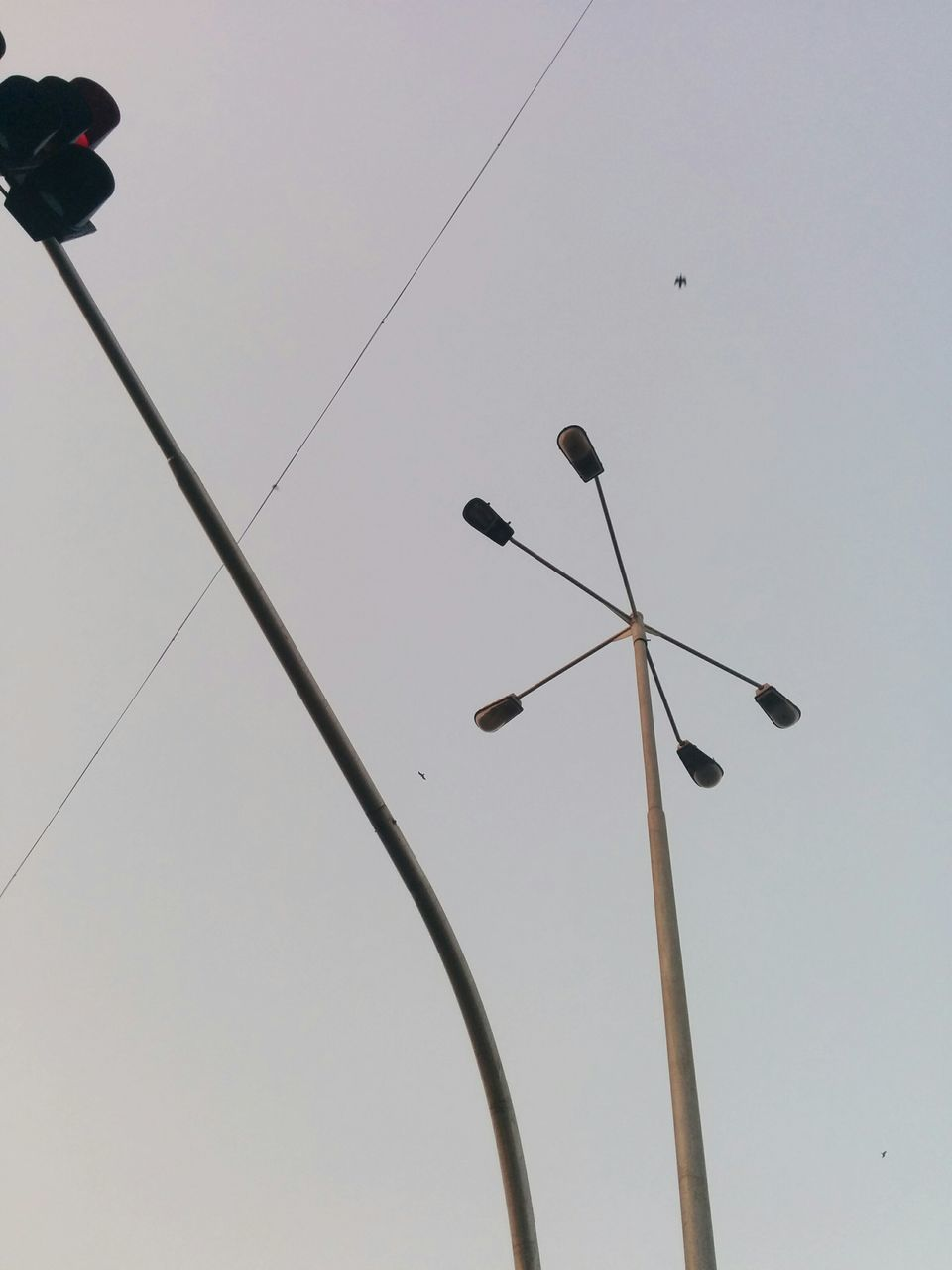 low angle view, cable, technology, connection, street light, electricity, clear sky, communication, day, no people, outdoors, sky, telephone line, perching, bird