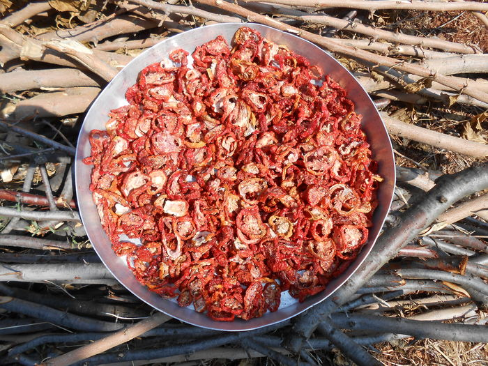 Sun Dry Sundriedtomatoes Sundries Sundried Sundried Tomato Sundry Sun Dried Sun Dried Tomatoes Dry Dry Food Food Food And Drink Sand Red Wood EyeEm Best Shots EyeEm EyeEmNewHere EyeEm Nature Lover Organic EyeEm Gallery EyeEmBestPics Nofilter The Purist (no Edit, No Filter) NoEditNoFilter No Filter, No Edit, Just Photography Agriculture Day Outdoors A New Perspective On Life