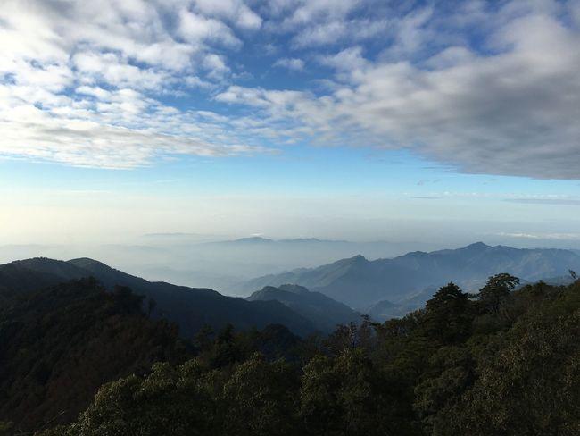 水墨雲海 Taiwan Mountain Beauty In Nature Cloud - Sky Scenics - Nature Sky Tree Mountain Range Tranquil Scene Forest Non-urban Scene Plant Travel Day Nature Outdoors No People Idyllic Landscape Tranquility Environment