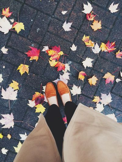 Low section of woman standing on street covered with leaves during autumn