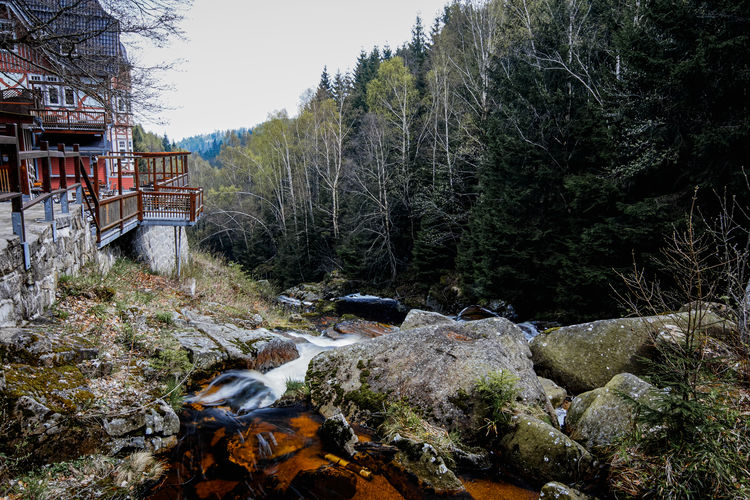 Landscape Harz