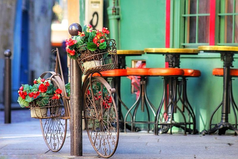 Thanks for my lovely Canon 1200D Architecture Bicycle Built Structure Colorful EyeEm Best Shots Flower Flower Pot Focus On Foreground Metal Multi Colored Paris Streetphotography