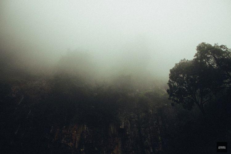 Misty Traveling Misty Naturelovers INDONESIA