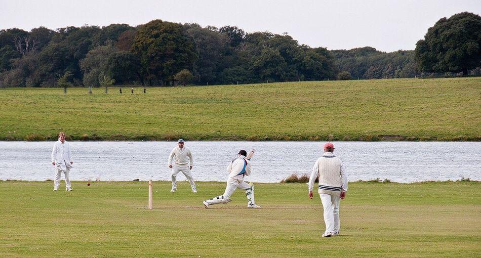 Crickets England Cricket Pitch Tradition Norfolk Holkhamhall Holkham Beach