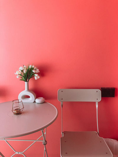 Potted plant on table against red wall