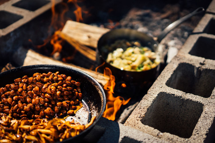 Cooking food for a picnic on a wood fire Lunch Rustic BBQ Backyard Cooking Family Farm Fire Pit Friends Gathering Grilling Happiness Meal Picnic Vineyards  Weekend Celebrate Chef Food Garden Outdoors Party Summer Wine Country Wood Burning