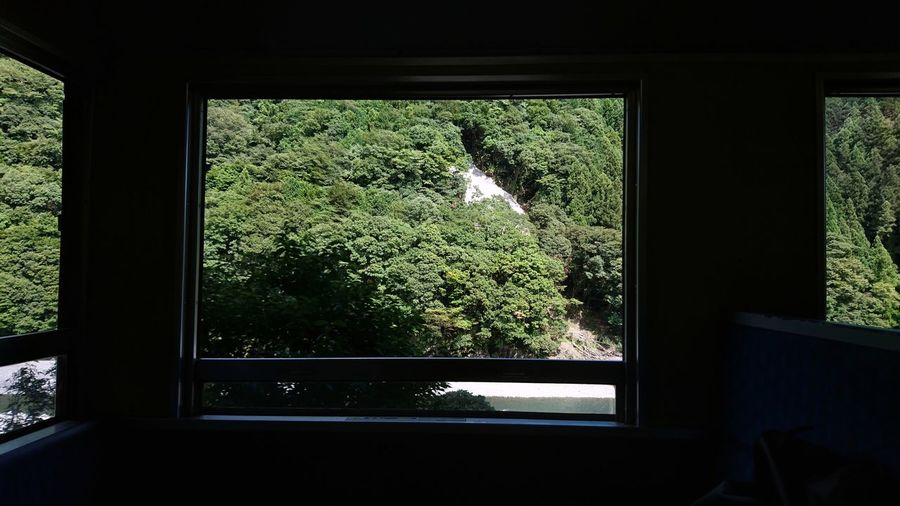 Train Windows Windows Window Frame Nature From My Point Of View Frame In Frame Perspective Light And Shadow Looking To The Other Side 電車旅 車窓から